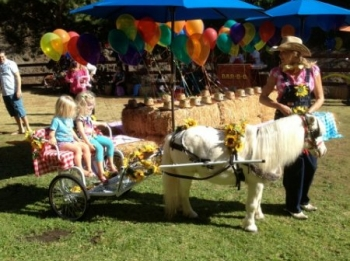 carriage-hayrides