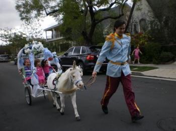 unicorn-pony-carriage