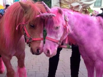 pink-unicorn_n