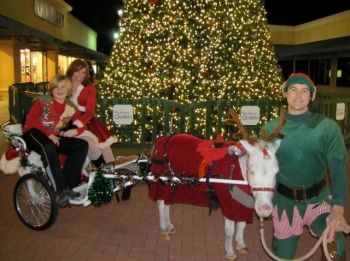 reindeer-carriage-elf