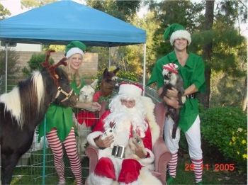 santa-petting-zoo-theme-party