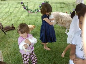 petting-zoo-bunny-cuddlers